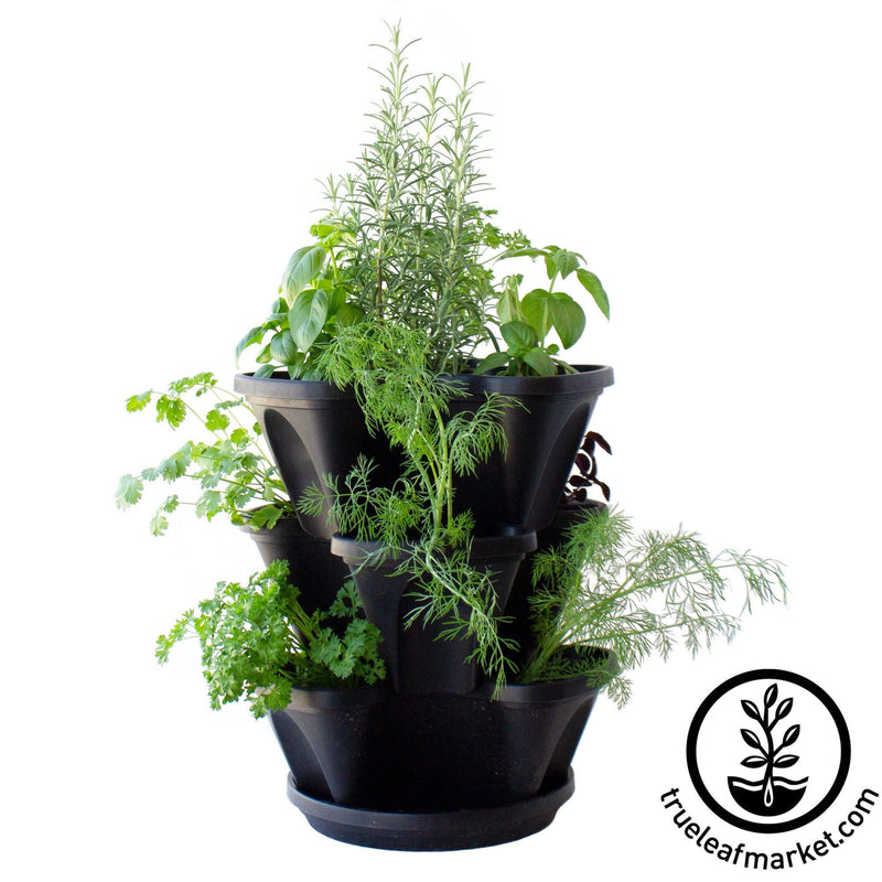 mini garden stacker black with herbs
