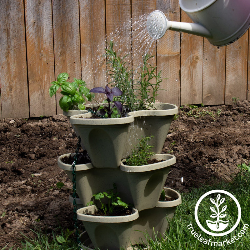 Garden Stacker Planter & Tea, Medicinal Herb Kit