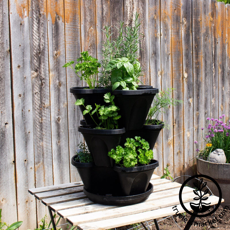 Culinary Herb Garden & Black Garden Stacker Planter