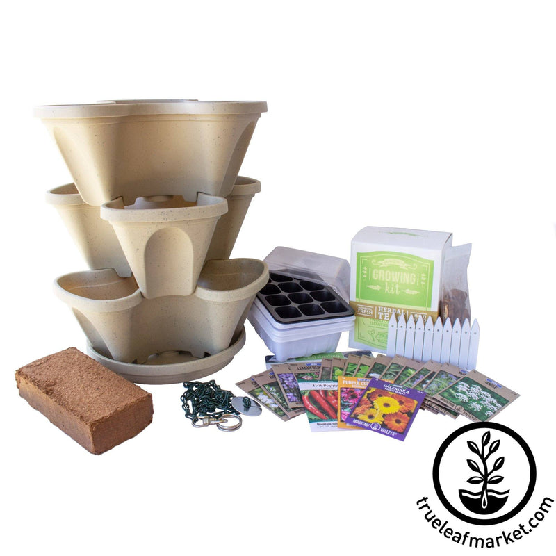 Medicinal & Tea Herbs Grow Kit - Stone Color