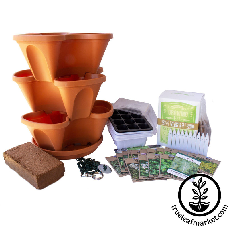 Complete Indoor Culinary Herb Garden Starter Kit - TerraCotta