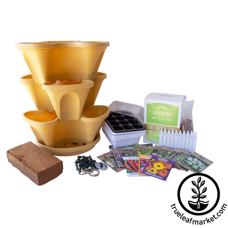 Medicinal & Tea Herbs Grow Kit - Tuscany