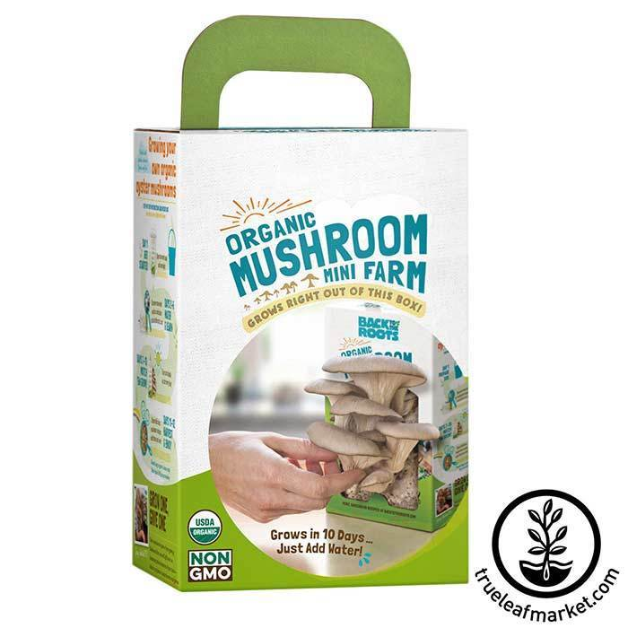 Back to the Roots - Organic Mini Mushroom Farm Box