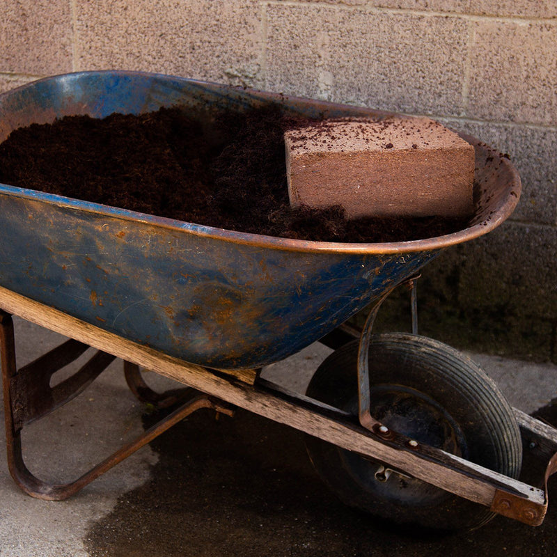 https://cdn.shopify.com/s/files/1/2016/2681/files/minute-soil-block-lifestyle-barrow_700.jpg?2689264706706591651