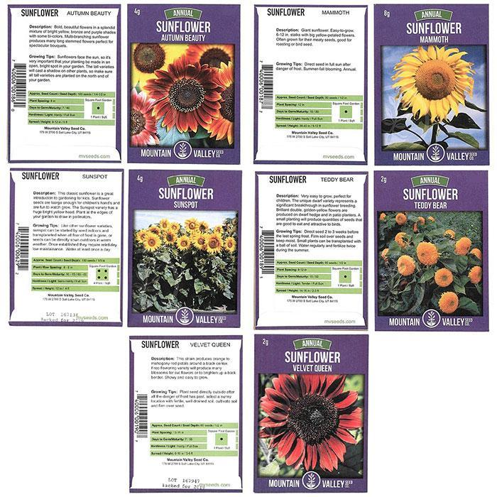 Heirloom Sunflower Seed Collection - 5 Pack Flower Garden