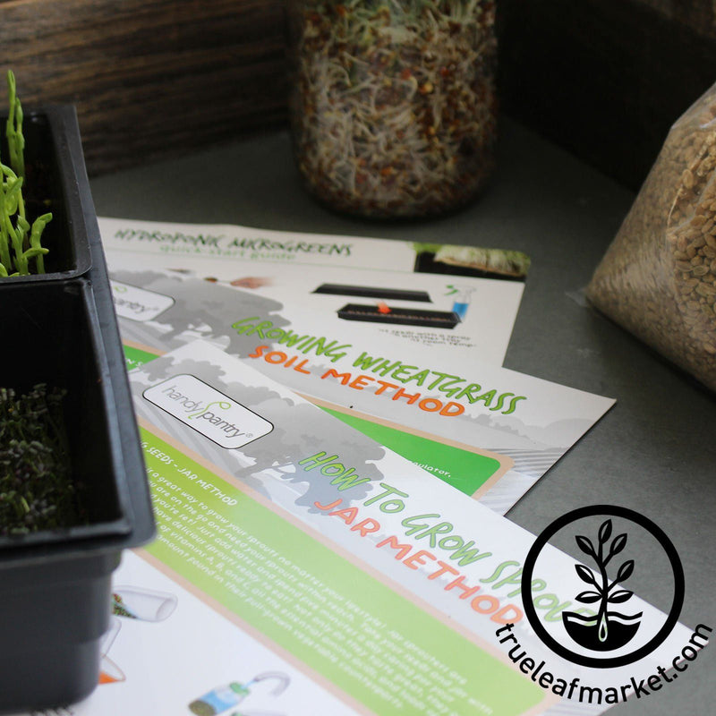 Instructions - How To Grow Wheatgrass Instructions