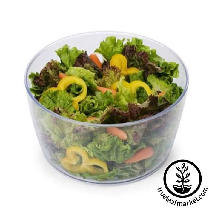 Salad with spinner bowl