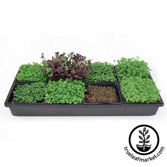 "Micro-Mats Hydroponic Grow Pads 5""x 5"" squares fit in small trays for more growing variety"