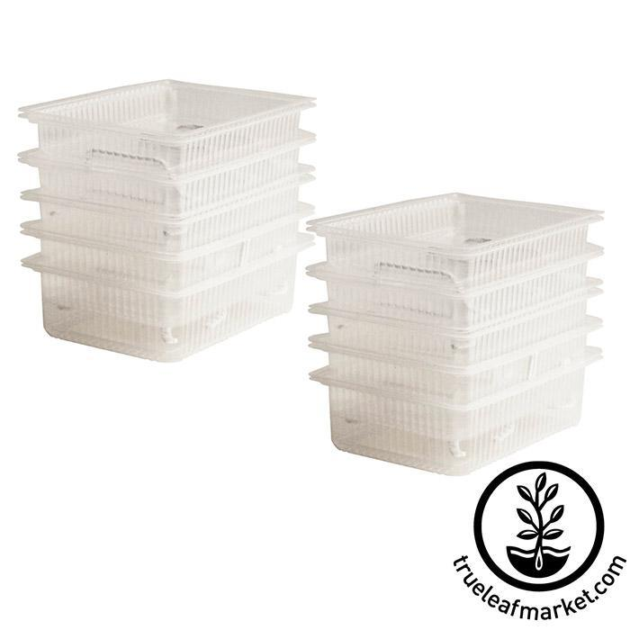 Self-Watering Growing Trays 10 pack