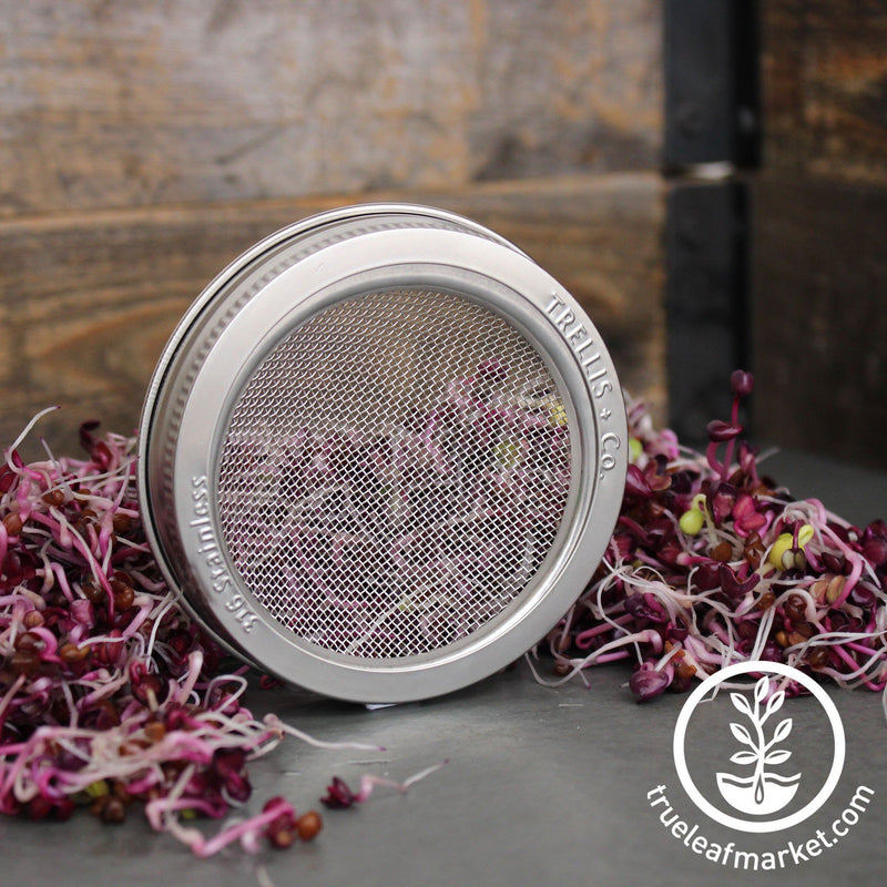 Stainless Steel Wide Mouth Sprouting Jar Lid