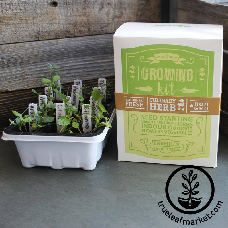 Stack and Grow Planter Plus Culinary Herb Kit