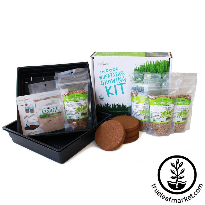 The Organic Wheatgrass Growing Kit parts