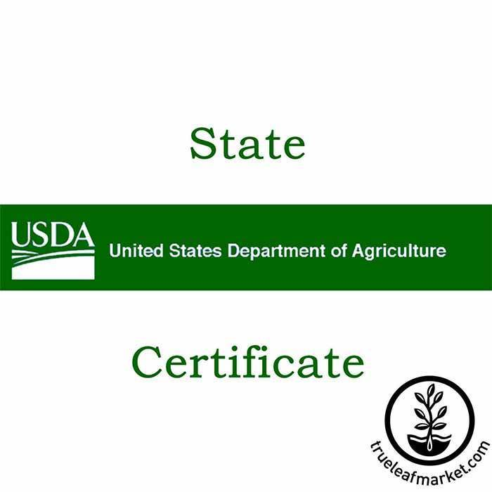 State Phytosanitary Certificate