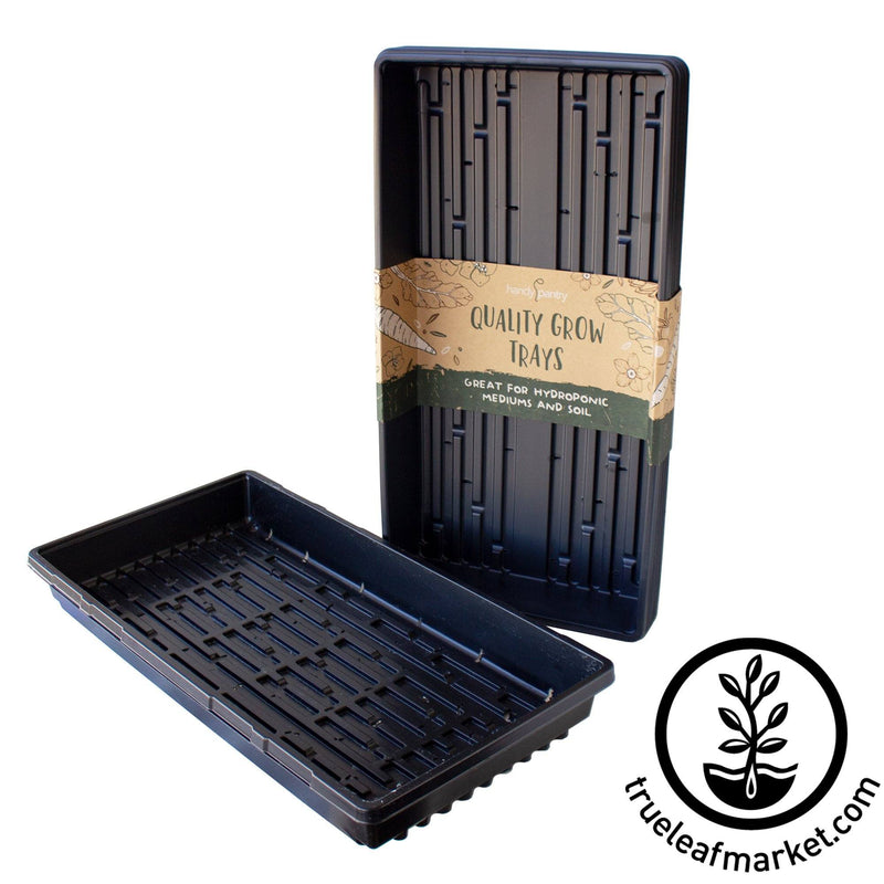 10 x 20 Growing Trays WITH Drain Holes