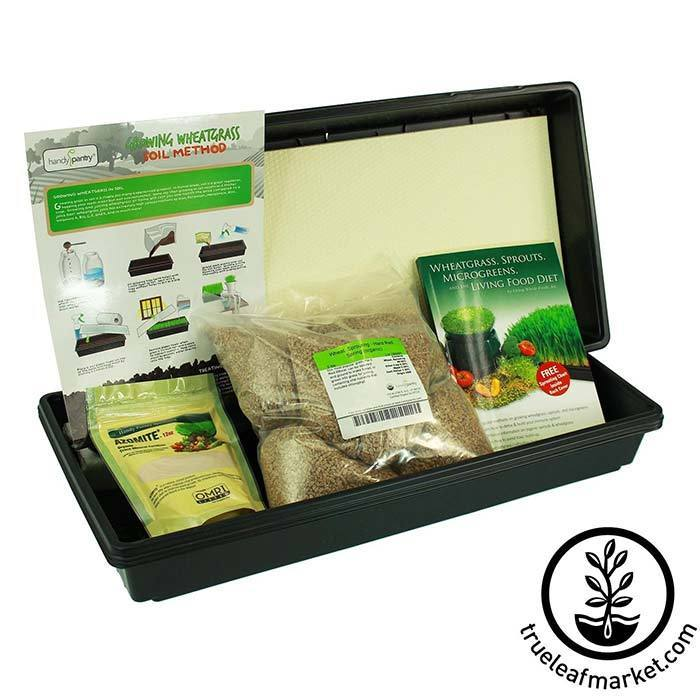 Hydroponic Wheatgrass Growing Kit