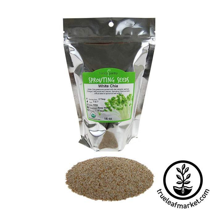 Chia: White Sprouting Seeds - Organic 1 lb