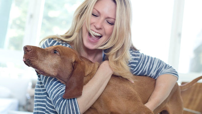 Do pets still play a role in our modern lifestyle?