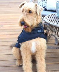 Shop the Aussie made range of Choozy Dog Coats