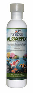 API Algaefix For Ponds 240ml