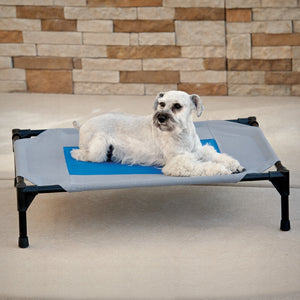 Elevated Coolin' Pet Cot Bed - Gray/Blue