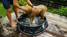 Doog Pet Pop Up Pool - Medium. A paddle pool designed for dogs!