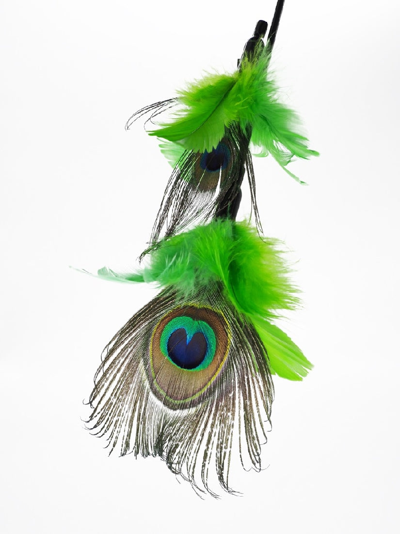 PURRfect Peacock Feather Cat Toy, with extra attachment