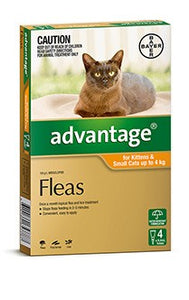 Advantage Cat Orange up to 4kg