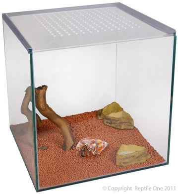 Aqua One Hermit Crab Starter Kit