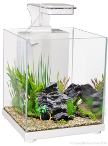 Aqua One Betta Sanctuary Glass Aquarium 10L 22.4cm W X 22.4cm D X 26.3cm H (White)