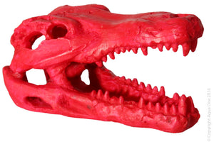 Aqua One Hermit Crab Alligator Scull Red 7.5x4.5x4.5Cm