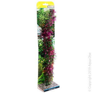 Aqua One Ecoscape Xlarge Rotala Red