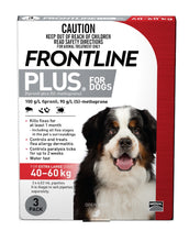Frontline Dog Red 40kg - 60kg