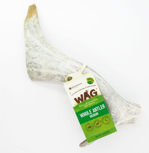 Wag Deer Antler Medium
