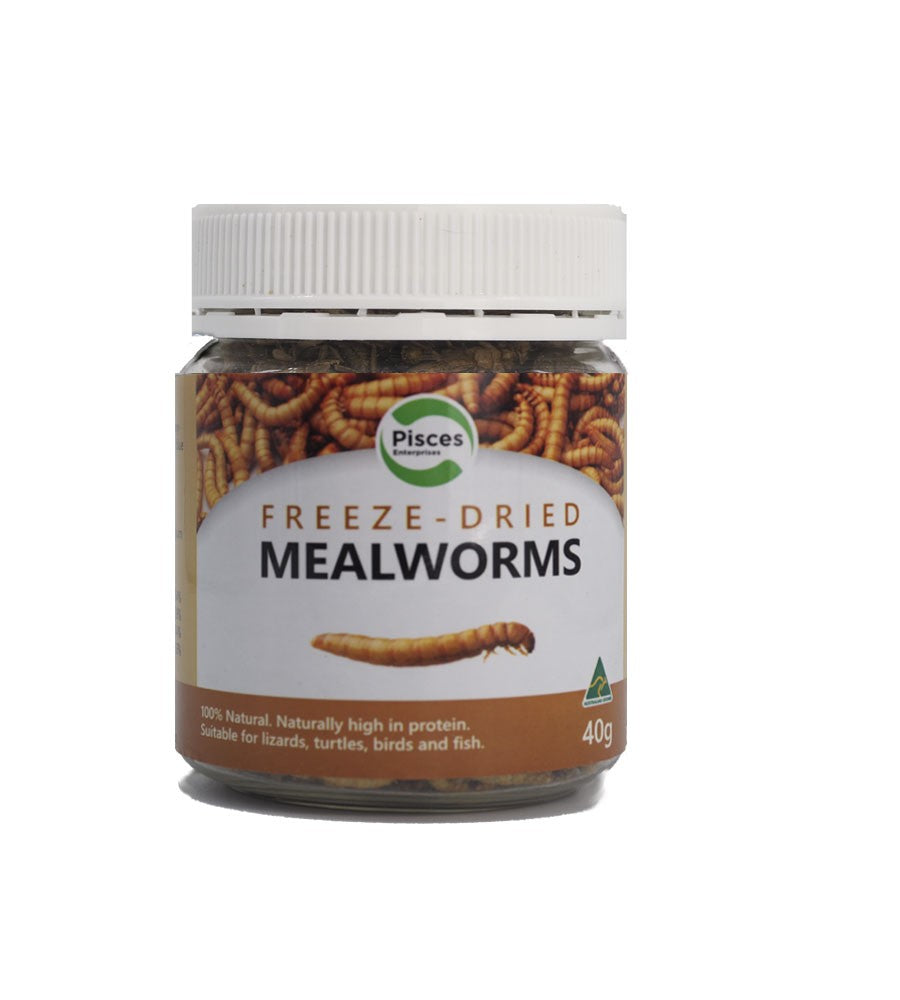 Pisces Freeze Dried Mealworms 40g Jar