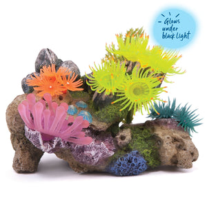 Kazoo Soft Coral Stone with Plants - Medium
