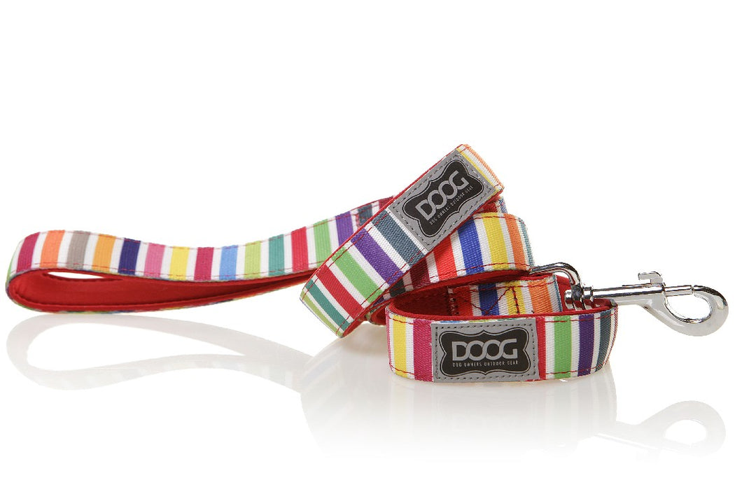 Doog Scooby Lead Rainbow Striped