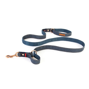 Ezy Dog Leash Vario 4 25mm