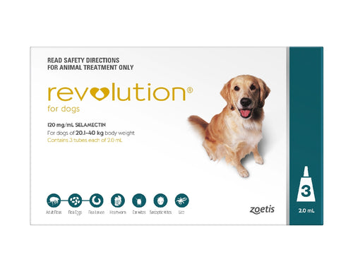Revolution Dog Extra Large 20-40Kg