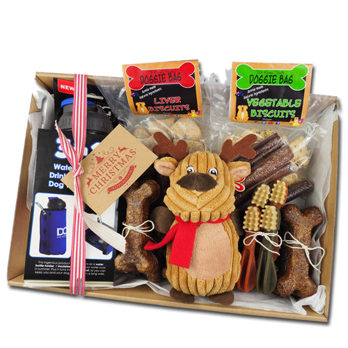Our exclusive  medium sized We Know Pets Christmas Hamper. Treat your pet this Christmas!
