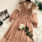 Party Lace Dresses Flowers Mesh Dress