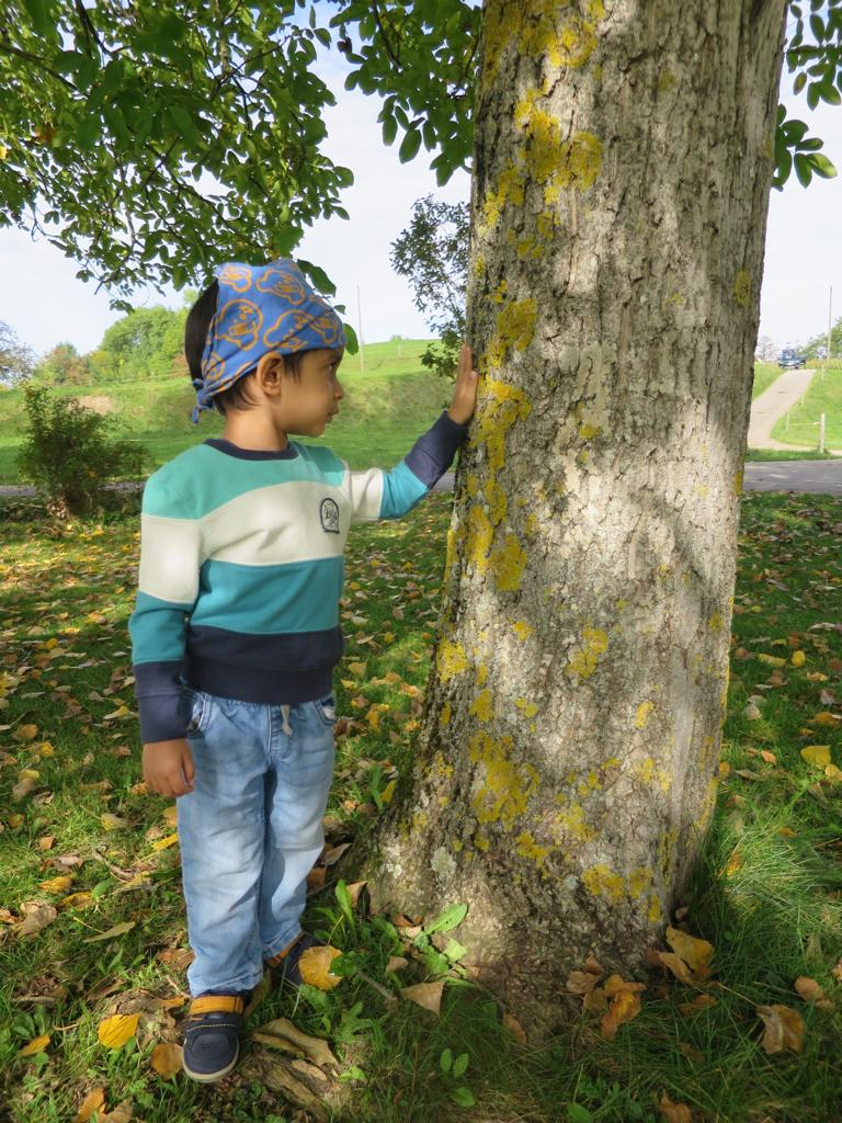 Advay in a tree autism story