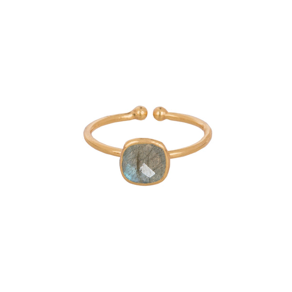 Small Rounded square bezel ring Gold
