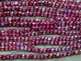 4mm Coated Violet AB Preciosa Traditional Czech Fire Polished Glass Beads, Full Strand / 50 PC (INCZ5816)