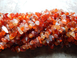 5X8mm Carnelian Natural Semi-Precious Chip Beads, 36 Inch Strand (INDOC95)