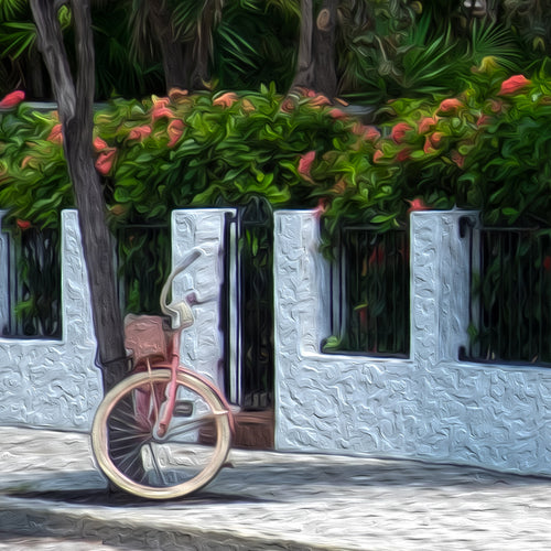 Close up of Key West House painting, bike in front of house