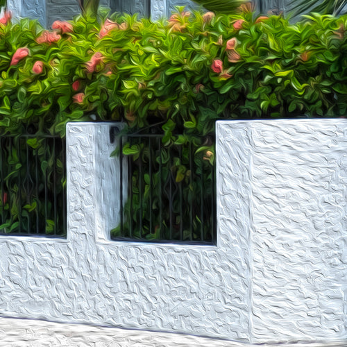 Close up of Key West House painting, fence and beautiful flowers