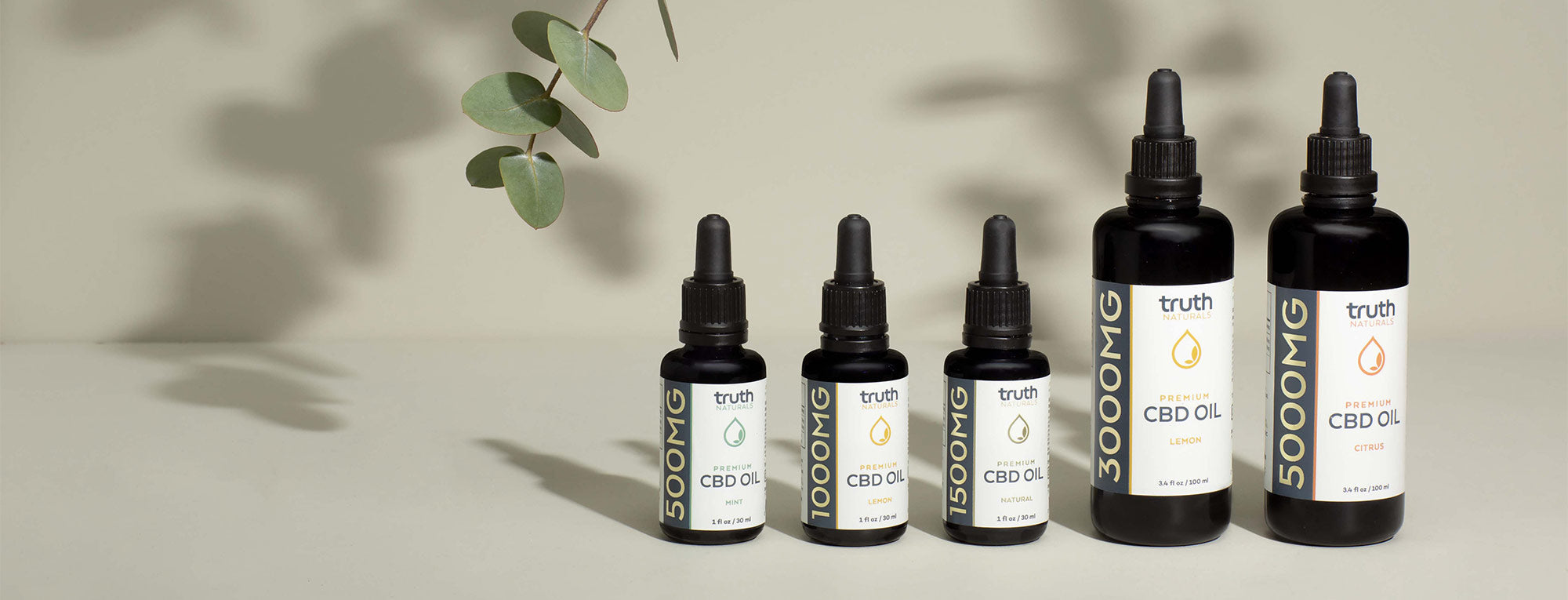 The Reasons Behind the Growing Popularity of CBD