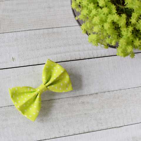 Speckled Lime Bow
