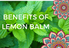 The Benefits Of Lemon Balm