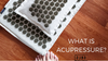What Does Acupressure Really Do?